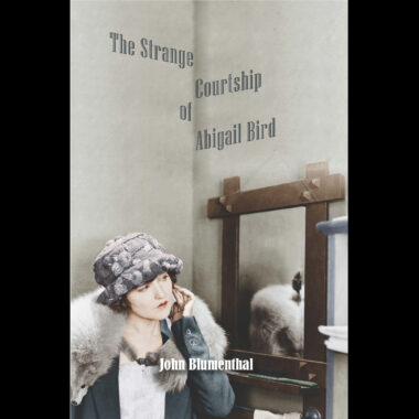 The Strange Courtship of Abigail Bird